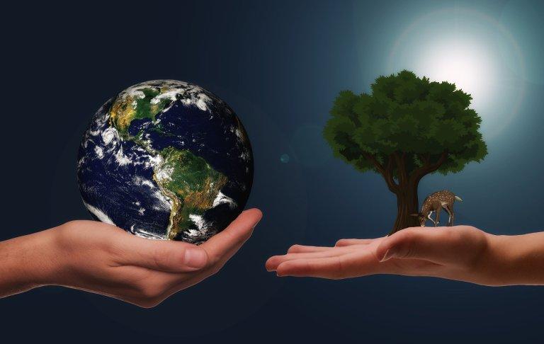 Перемирие с природой или капитуляция?