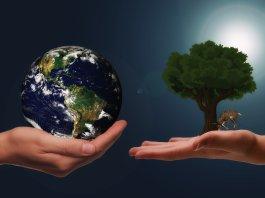 биоразнообра́зие