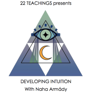Developing Intuition Audio Classes