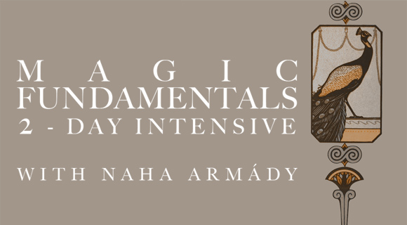 Jan 12th & 13th Magic Fundamentals 2-Day Intensive $180