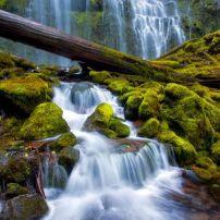 Ujevara Proksi, Oregon USA