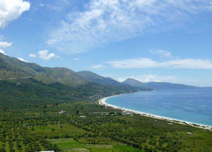 Greqia dhe Shqipëria  projekt për kultivimin e ullirit dhe orientimin drejt tregjeve botërore