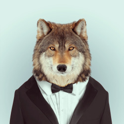 WOLF por Yago Partal para ZOO RETRATOS