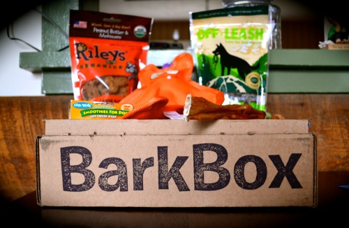 BarkBox came today … needless to say … it's another month of wild and craziness in the Frost household.  Orange Loopy appears to be the fan favorite! Of course - Mr. H hasn't had his paws on the bully stick yet.