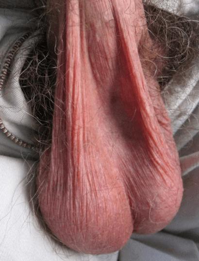 fotos homens pelados paus sacudos