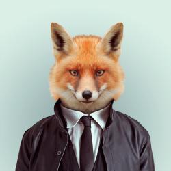 FOX por Yago Partal para ZOO RETRATOS