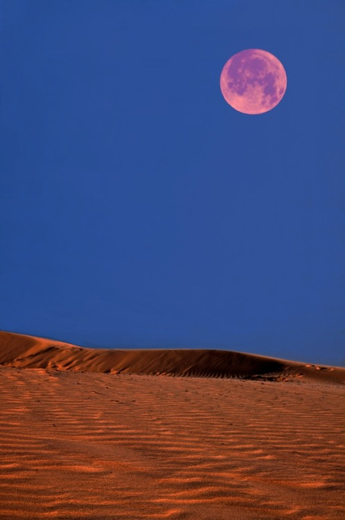 unwrittennature:Desert moon by:  Jay Z