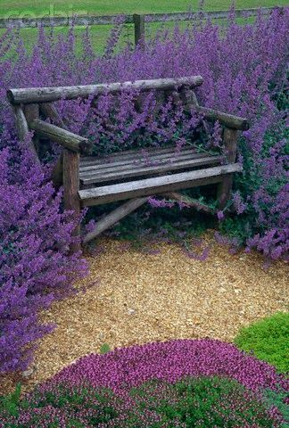 flowersgardenlove:</p> <p>I WANT TO SIT HERE<br /> AND DREAM.<br /> MAYBE TO WRITE<br /> BUT MOSTLY TO DREAM.<br />