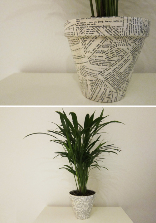 hrrrthrrr:  DIY: Wordy Decoupage Planter So this project only took me about an hour to do.  You can use pretty much anything to do this (photos, newspaper, magazines, paycheck stubs, junk mail, homework you never finished).  All you need is a pot, paper, a paintbrush, mod podge, and a plant.  Just cut your paper into strips and collage them all over your surface.  Once you have it all covered you just need to do a once over with your mod podge to seal it all.  Throw a plant in it and you are done! Total Cost: $20 (including the plant) This was too easy and I love the results! …Although I'm now missing large chunks of my thesaurus.