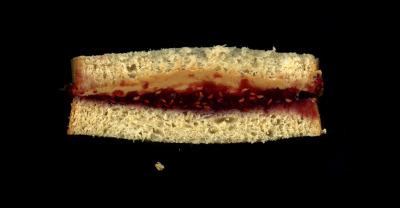 Homemade: Peanut Butter, Raspberry Jelly, on Wheat Bread