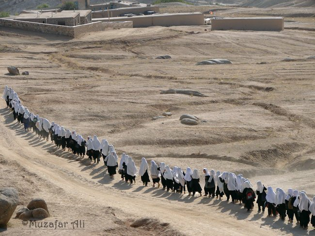 A line of girls on their way to school. In Afghanistan most of the cities have limited number of schools which are mostly far away from students home. From Everything Afghanistan