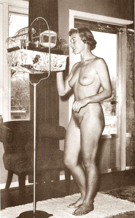 ye-olde-porne-shoppe:  Freer than a bird  Nice to see a retro shot of a lovely woman enjoying nudity at home. Why wear clothes if you don't have to?
