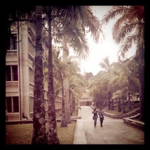 Mi futura universidad (Tomada con instagram)