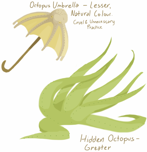 An example of a hidden Greater Sand Octopus, and a lesser sand octopus that has been turned into a sun umbrella