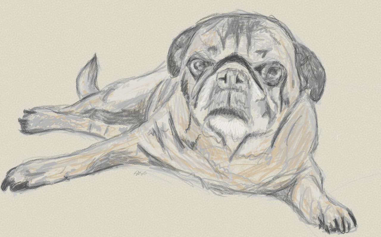 Sketch of Rocky in Photoshop CS6 with an erodible tip
