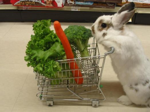 légumes paléo québec