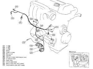 SR20DET Lower harness layout | The Ultimate 240SX Guide