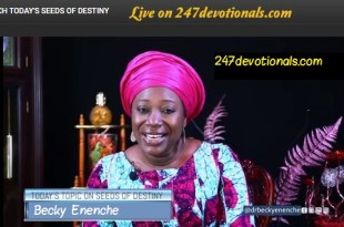 Seed of Destiny Devotion for Today