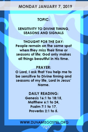 THE SEEDS OF DESTINY DAILY