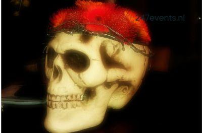 Halloween feest organiseren, decoratie en aankleding schedel