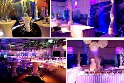 Kerstfeest zakelijk evenement of personeelsfeest met thema Ice Age, Winterwonderland of Frozen afbeelding 9