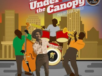 Music: Under the canopy- Frank Edwards