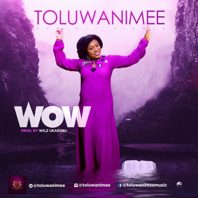 toluwanimee - wow