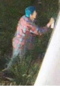 surveillance still shot of vandalism suspect