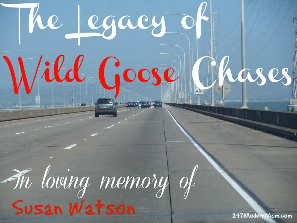 The Legacy of Wild Goose Chases: In Loving Memory of Susan Watson