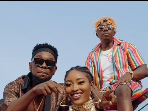 VIDEO-Rayvanny-ft-Patoranking-Zlatan-Tetema-Remix