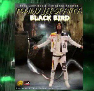 Tommy-Lee-Sparta-Black-Bird