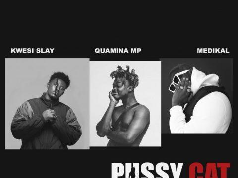 Kwesi-Slay-Pussy-Cat-ft.-Quamina-MP-Medikal