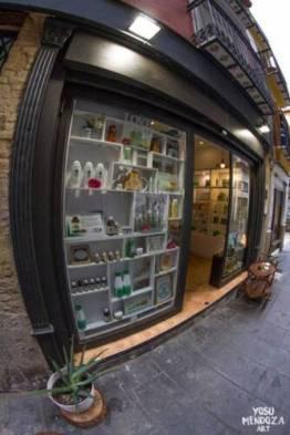 botiga aloe_o