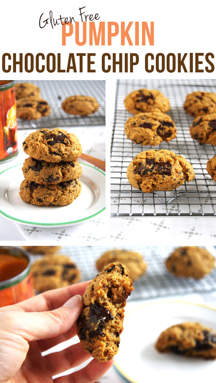 Pumpkin Chocolate Chip Cookies // 24 Carrot Life #glutenfree #pumpkin #chocolate
