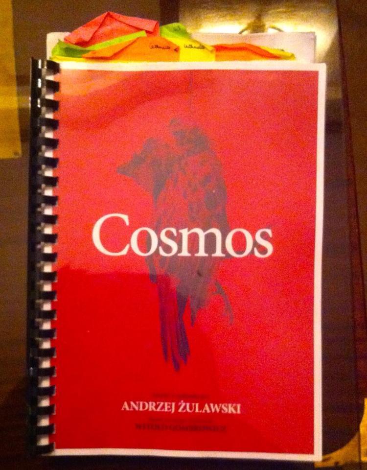 Cosmos Zulawski