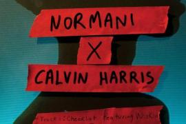 Normani & Calvin Harris – Checklist Ft. WizKid