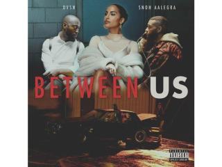 "Listen to dvsn & Snoh Aalegra New Song ""Between Us"""