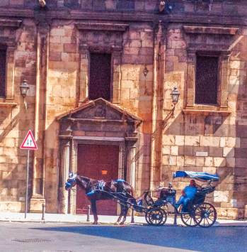 Palermo horse-drawn cart