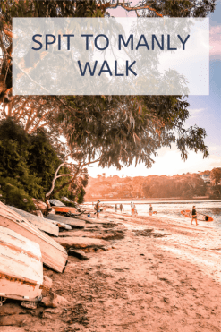 spit to manly walk