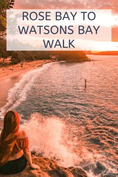 rose bay to Watsons bay walk
