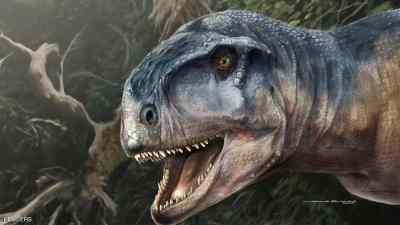 جمجمة الديناصور