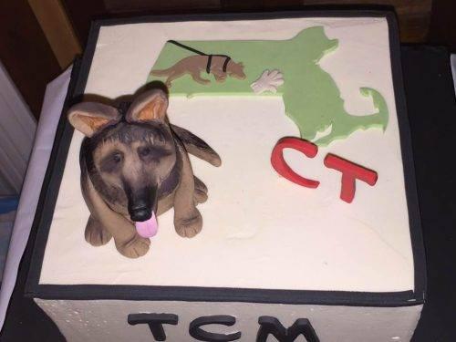 TCM CT Cake2