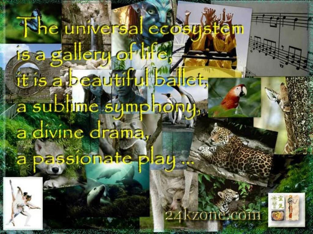 Universal Ecosystem