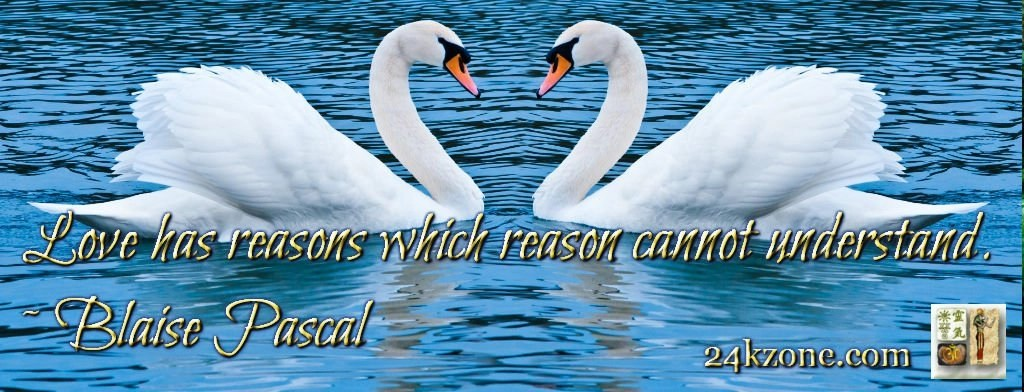 Love has reasons