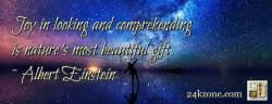 Joy in looking and comprehending