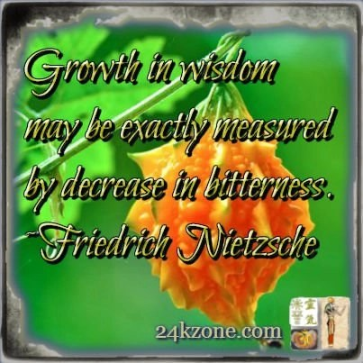 Growth in wisdom