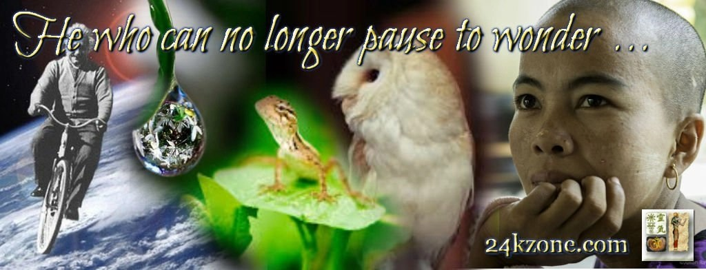 He who can no longer pause to wonder