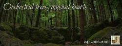 Orchestral trees musical hearts
