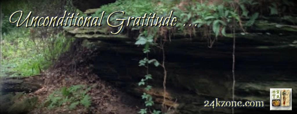 Unconditional Gratitude
