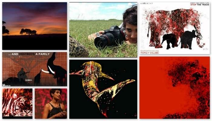 AsherJay collage